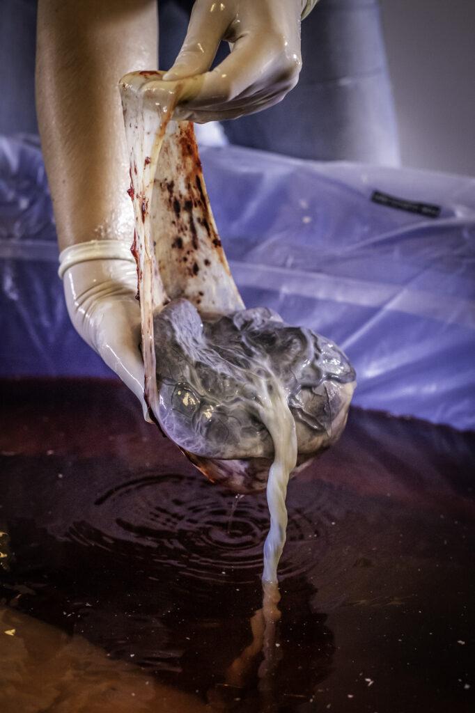 geboortefotografie-placenta